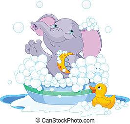 elefant, har, bad