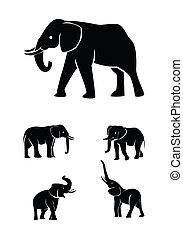 elefant, set, verzameling