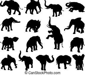 elefant, tier, silhouetten