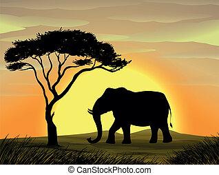 elefant, träd, under