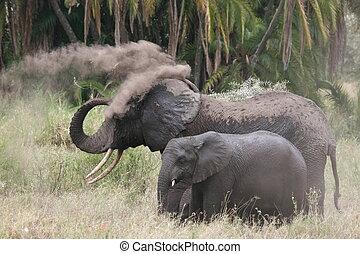 Elefant with cub having sand-shower in Serengeti NP
