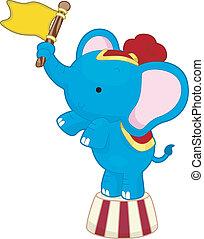 elefante circo, con, bandiera