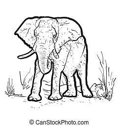 elefante, contorno, ilustración