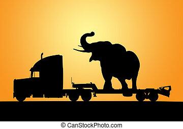 elefante, en, camión, con, remolque