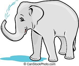 elefante, il bagnarsi