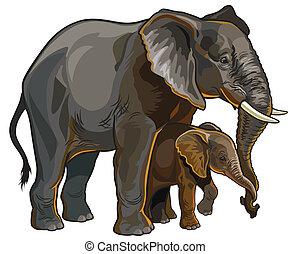 elefante, madre, con, bebé