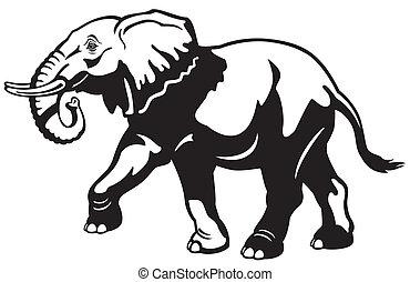 elefante, negro, blanco