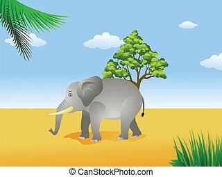 elefante, savana