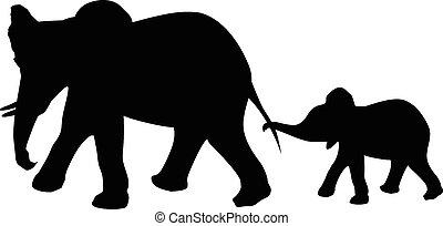 elefante, y, bebé