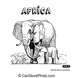 elefantes africanos, savanna