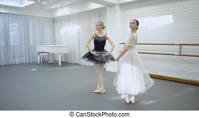 Elegant ballerinas dance in ballet studio.