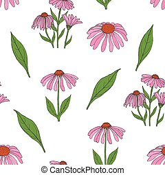 Elegant botanical seamless pattern with gorgeous echinacea flowers, stalks and leaves on white background. Flowering herb hand drawn in vintage style. Vector illustration for wallpaper, textile print.