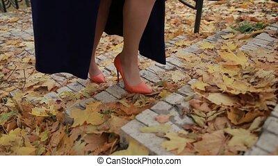 Elegant businesswoman climbing stairs in autumn - Elegant...