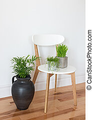 Elegant chair with green plants