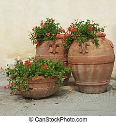 elegant classic tuscan terracotta plant containers with geranium flowers on italian terrace, Europe
