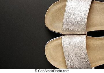 elegant female silver shoes on black background