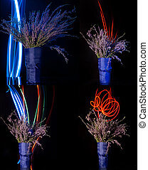 Elegant flowers bouquet set on black background with copy space