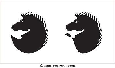 Elegant Hairy Black Horse