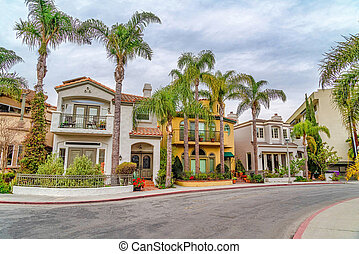 Elegant homes along road lined with palm trees in Long Beach scenic neighborhood