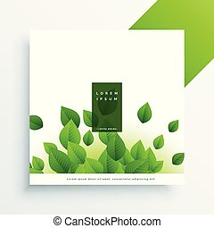elegant leaves background with text space
