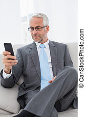 Elegant mature businessman text messaging on sofa in living...