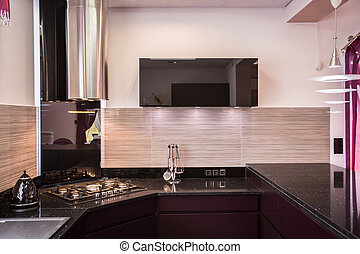 Elegant modern kitchen