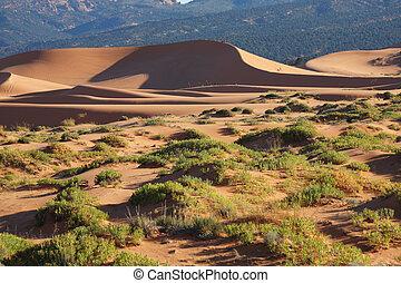 Elegant orange-pink dune