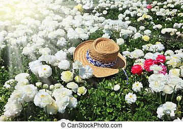 Elegant straw hat on a sunny day