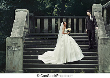 elegant stylish young couple beautiful bride and groom on the stairs