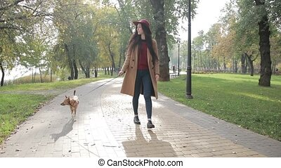 Elegant woman walking with dog in autumn park