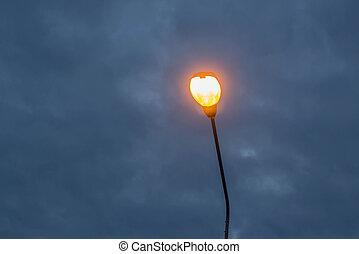 elektrisk, streetlampa, hos, twilight.