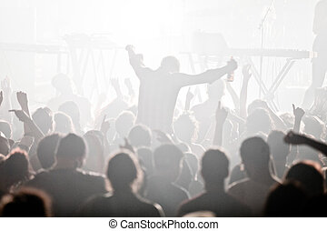 elektro, concert, und, crowd