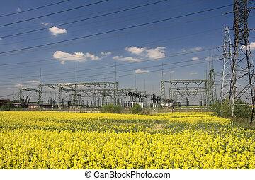 elektromos, villanyoszlop, és, farmland