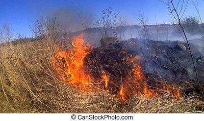 element of fire: steppe and field fires harm nature - camera...