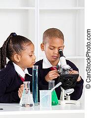 elementair, klaslokaal, school geitjes