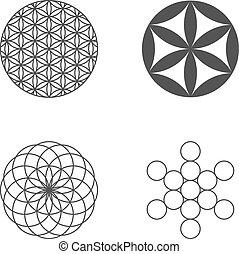 elementara, sätta, icons., blomma, design, life.