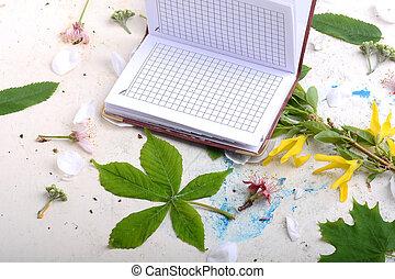 elementara, scrapbooking, årgång, anteckningsbok tidning, bakgrund, tom, vit