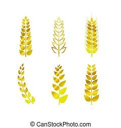 elementara, vete, gyllene, enkel, design, lägenhet, stil, ikonen, undertecknar, kollektion, sätta, vektor, isolated.