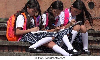 Elementary School Children Studying