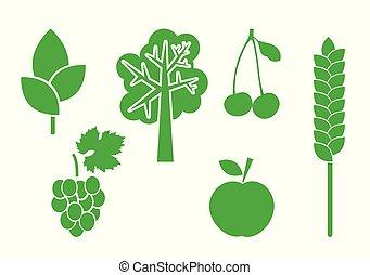 elementer, sæt, natur, -, vektor, grønne