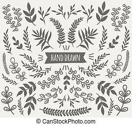 elementi decorativi, collezione, mano, floreale, disegnato