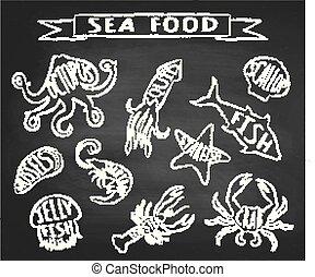 elementi, grunge, label., menu ristorante, frutti mare, lavagna, contorno, gesso, illustrazioni, vettore, contorni, mare, textured, names., animali, disegno, decorazione