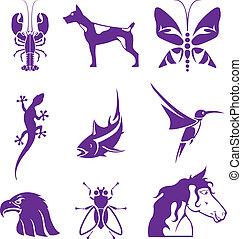 elementos, animales