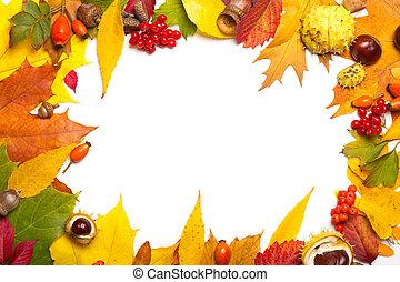 elementos, castaña, marco, -, briar, viburnum, otoño, bellota, rowan, multicolor, hojas