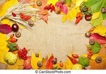 elementos, castaña, trigo, marco, -, briar, viburnum, otoño, bellota, rowan, multicolor, hojas
