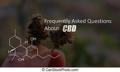 elementos, cbd, médico, marijuana, químico, cannabis, contido, 2019, thc
