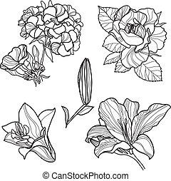 elementos, projeto fixo, floral