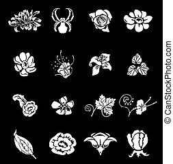 elementos, projeto floral
