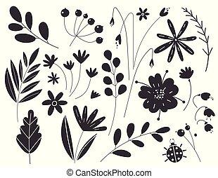 elements., illustration, plants., botanique, noir, silhouettes, feuilles, croquis, vecteur, blanc, isolé, arrière-plan., flowers., couleur, floral
