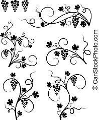 elements., uva, disegno
